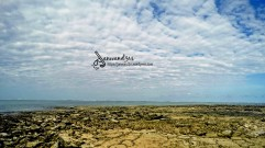 guyam-island-siargao-back-part