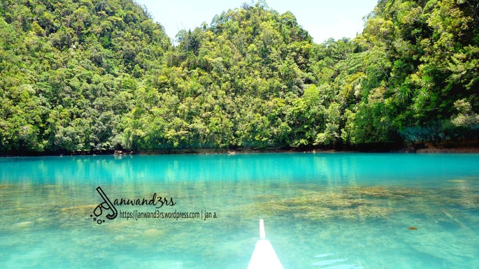 stingless-jellyfish-sanctuary-bucas-grande
